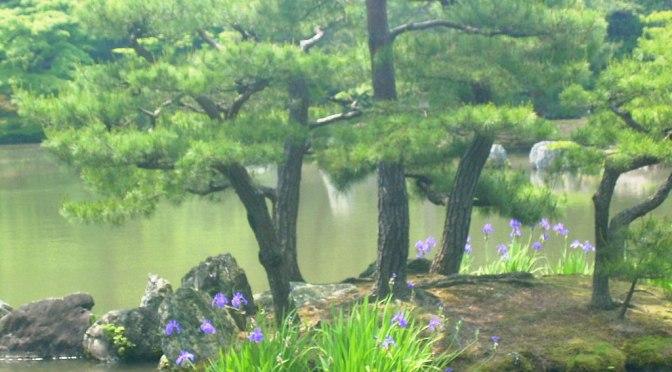 Recitando los Gokai